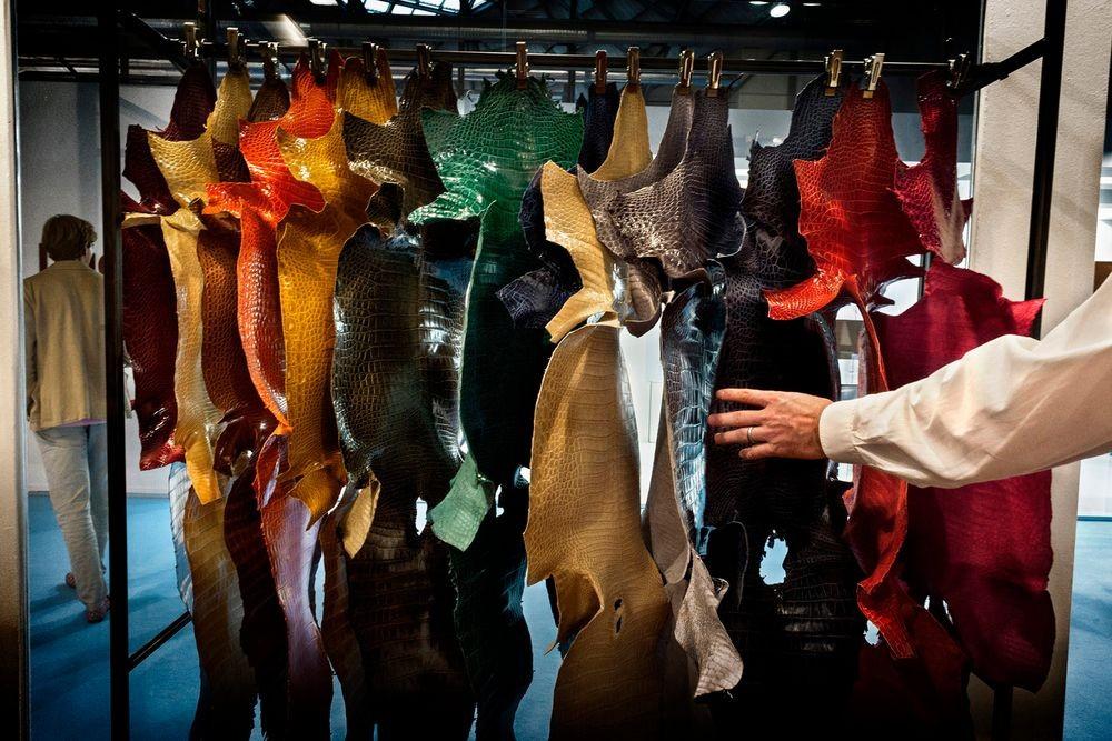 """میلان، ایتالیا، سپتامبر 2014. پوست تمساحها در یکی از مهمترین نمایشگاه های دنیا به اسم """"LINEAPELLE"""" به نمایش در آمدهاند. هزاران نفر از کارکنان صنایع تولید پوشاک از سراسر جهان به اینجا آمدهاند."""